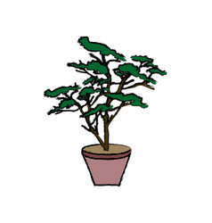 Potted plant tree natural botanical vector