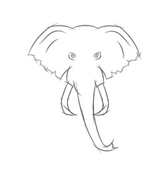 Elephant head front view this sketch may be used vector
