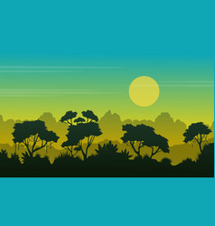 Collection rain forest beauty landscape vector