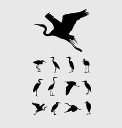 Heron and stork bird silhouettes vector