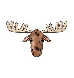 moose antler animal natural wildlife image vector image vector image