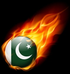 Round glossy icon of pakistan vector