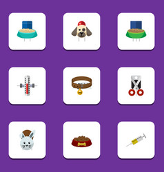 Flat icon pets set of vaccine shears rabbit meal vector