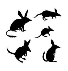 Bandicoot silhouettes vector image