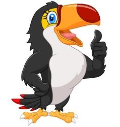 Cartoon toucan gives thumb up vector