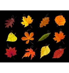 Autumn leaves tags isolated on black background vector