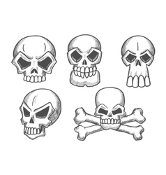 Skulls and skeleton crossbones sketch icons vector