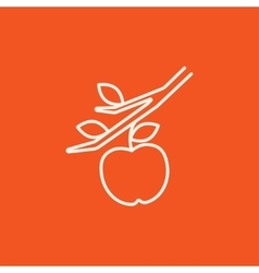 Apple harvest line icon vector image