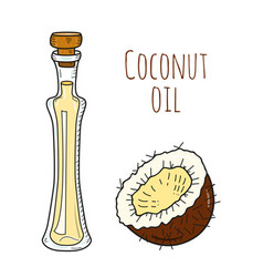 Colorful hand drawn coconut oil bottle vector