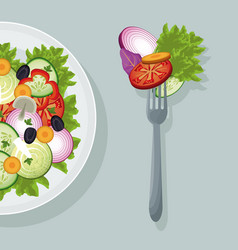 salad vegetables food healthy organic vector image
