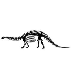 Dinosaur skeleton silhouette vector image
