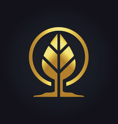Gold leaf botany logo vector
