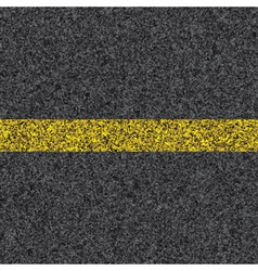 stripe on asphalt vector image vector image