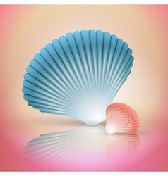 big and small seashells vector image