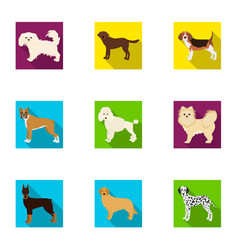 Dachshund laika poodle and other web icon in vector