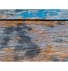 Tracing - texture and pattern of wooden plank vector image vector image