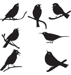 Bird silhouettes bird on branch vector