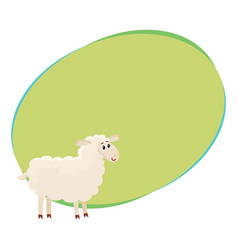 Well gromed fluffy sheep lamb with big eyes vector