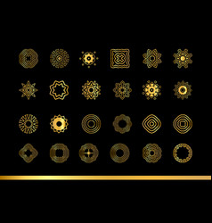 Gold ornaments se vector