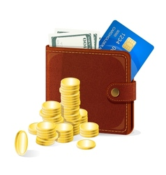 Purse with money vector image vector image