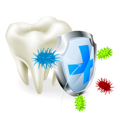 tooth and shield concept vector image
