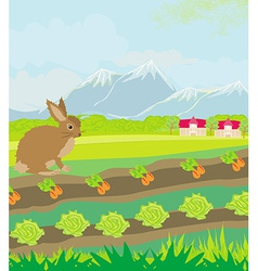 Rural landscape with hare vector