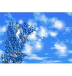 Sky and herb vector