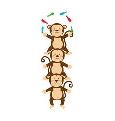 Cute monkey circus animal vector