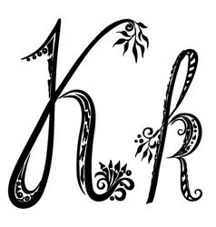 letter K k vector image