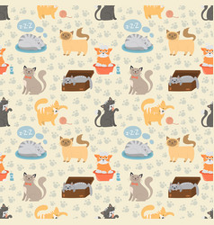 cute cats character different pose seamless vector image