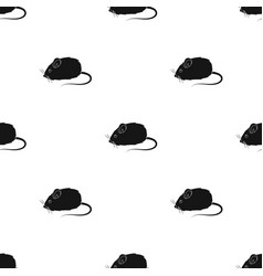 Mouse toypet shop single icon in black style vector