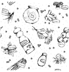 Seamless pattern of spices and herbs vector image vector image