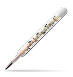 thermometer medical a glass thermometer for vector image