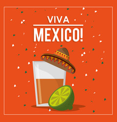 Viva mexico greeting tequila hat design vector