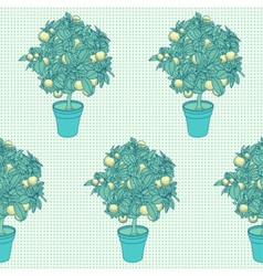 Seamless pattern of small citrus tree in a pot vector