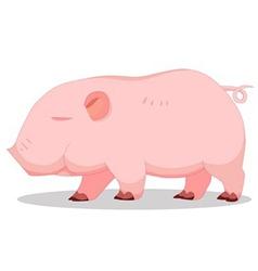 Piglets vector