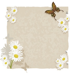 Paper with daisies and butterf vector