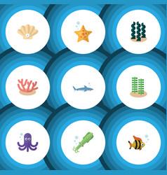 Flat icon marine set of alga tentacle shark and vector
