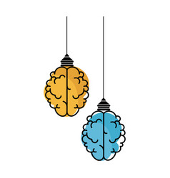Isolated two abstract brains vector