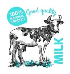 Sketch of cow vector