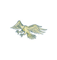 Bald eagle swooping etching vector