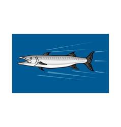 Barracuda retro vector
