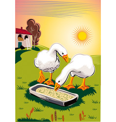 Geese in a meadow eating from a manger vector