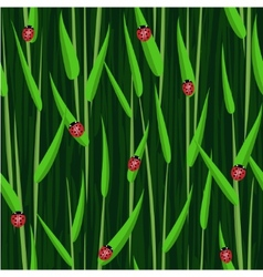 grass ladybird seamless background vector image vector image