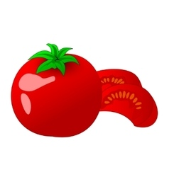Tomato and slice isolated on white vector