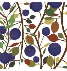 Blueberry fruit with leaves design vector