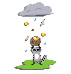 Rain for racoon vector image