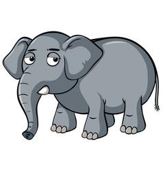 Sad elephant on white background vector