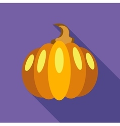 Thanksgiving pumpkin icon flat style vector image