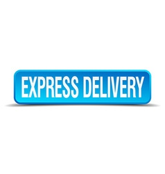 Express delivery blue 3d realistic square isolated vector